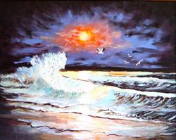 Mouettes sur la vague