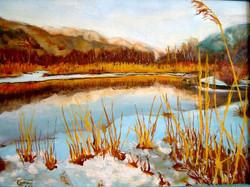Lac de Mont Orge
