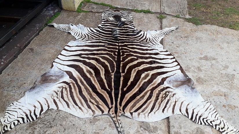 Zebra hides