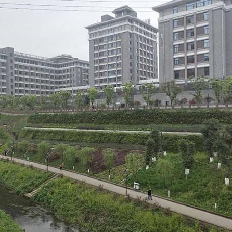 重庆精神病院东侧边坡治理项目(2015年).png