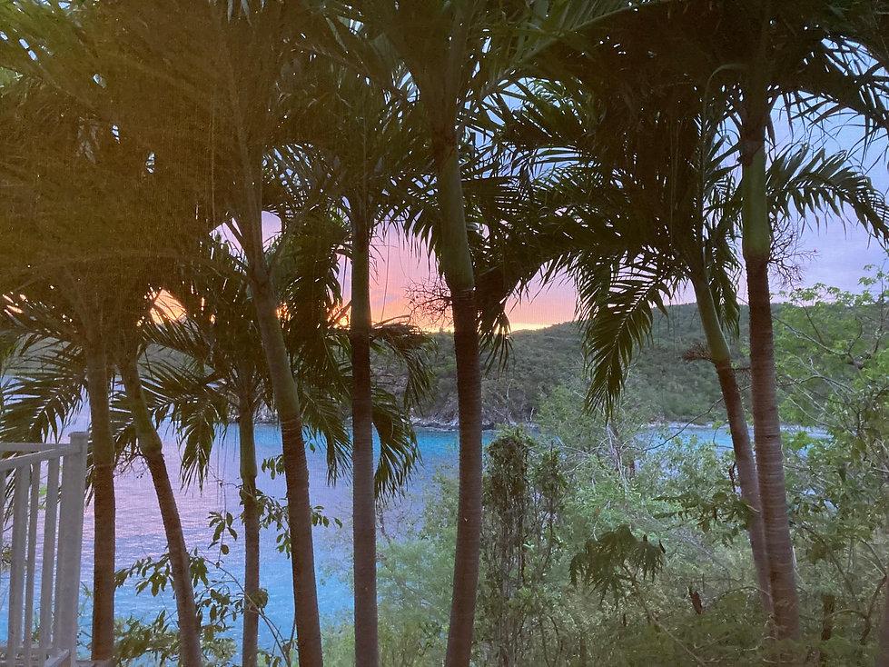 GB Bathroom Palm Sunset.jpeg