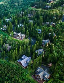 Woodlands Point Community