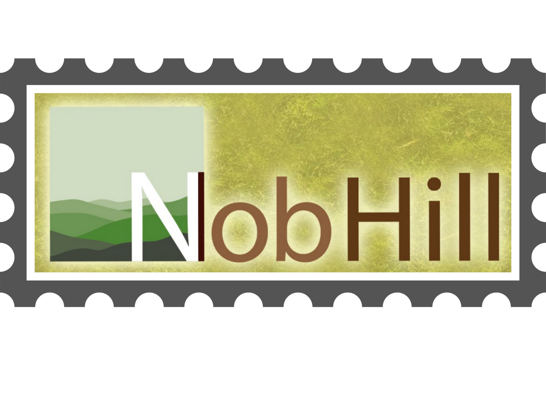 Nobhill at Saratoga Hills