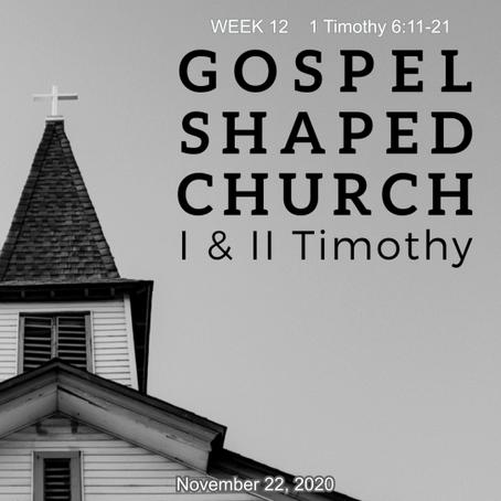 Flee Evil, Pursue Godliness, Guard the Gospel