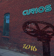2016 Curios Cover.jpg