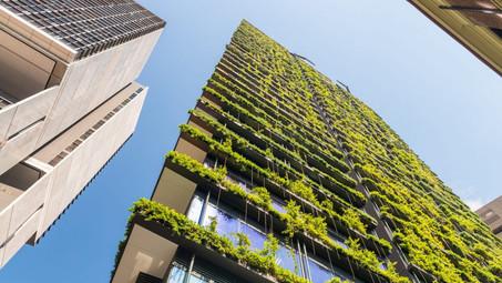 El desafío de la sustentabilidad en los proyectos de construcción
