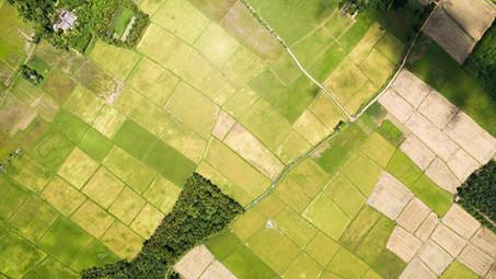 Construcción en áreas rurales: ¿Qué necesito para desarrollar ese tipo de proyectos?