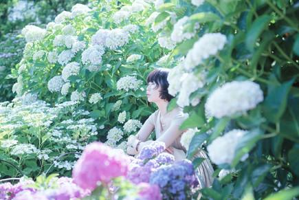 紫陽花003light.jpg
