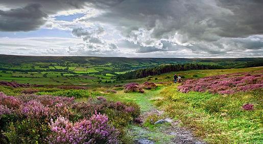 Rosedale North Yorkshire