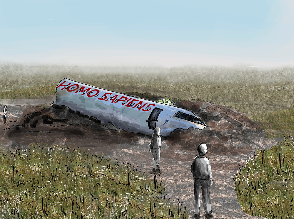 Aircraft has crashed in a commercial crop field