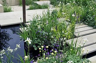 Contemporary Garden (1000px x 664px).jpg