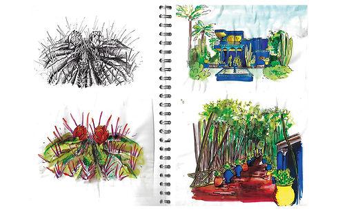 Jardin Majorelle Sketches in Felt Tip.jp