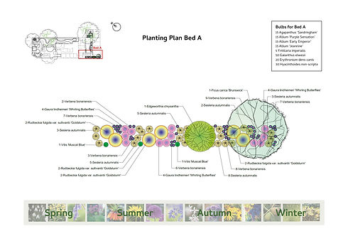 The Chiltern Centre Planting Plan for Su