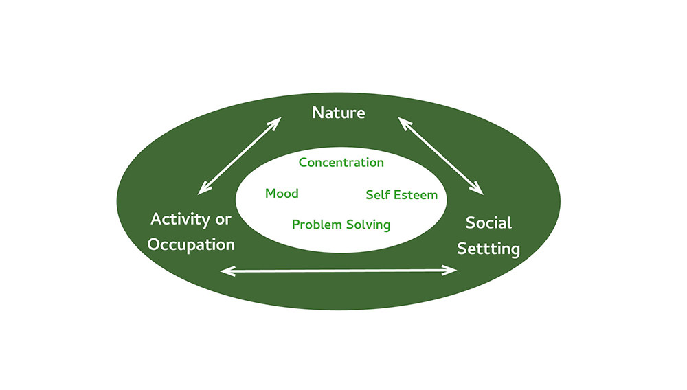 The Attention Restoration Theory defines how a therapeutic garden can specifically improve the quality of the experience through activity or occupation, social setting and nature.