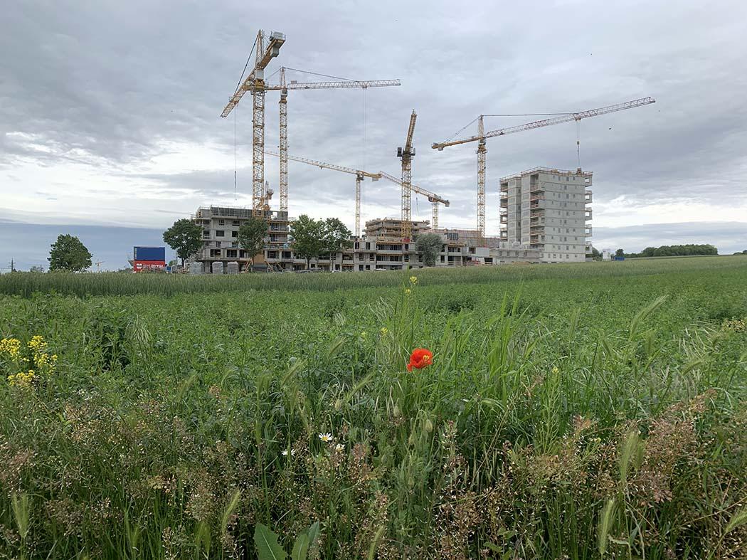 Baustelle_Mai19