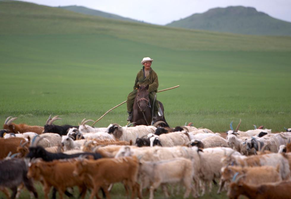 TRANSMONG MONGOLIA MORON BULGAN IMG_8458