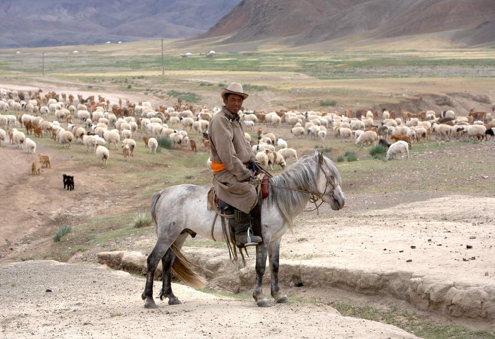 TRANSMONG MONGOLIA SCHINE IDER HATGAL IM