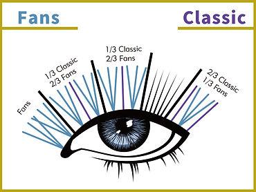 wispy-eyelash-set-mapping-instructions.jpg