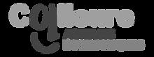 logo CAE transparent.png