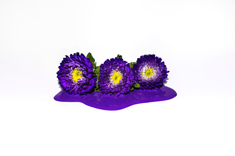 Its own color; Purple