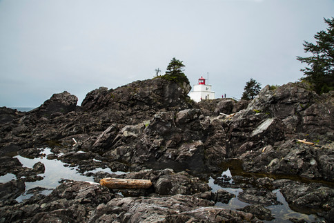 Wild Pacific trail, Ucluelet, BC, Canada, 2016