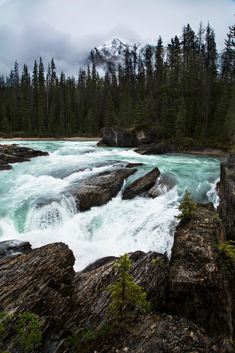 Natural bridge, Yoho national park, Bc, Canada, 2016