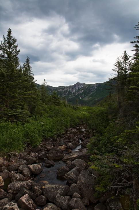 Gaspesie national park, Qc, Canada, 2017