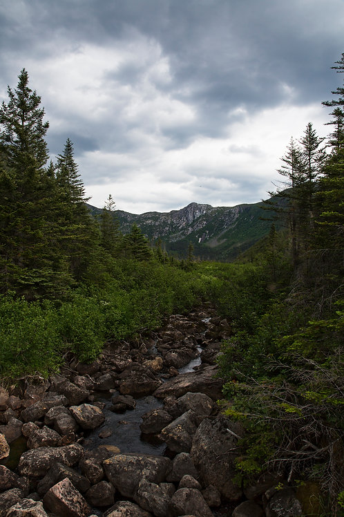 Gaspesie national park trail
