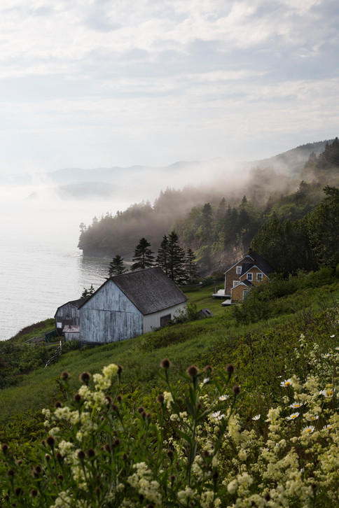 Foggy scape on the sea, Forillon national park, Gaspesie, Canada, 2017