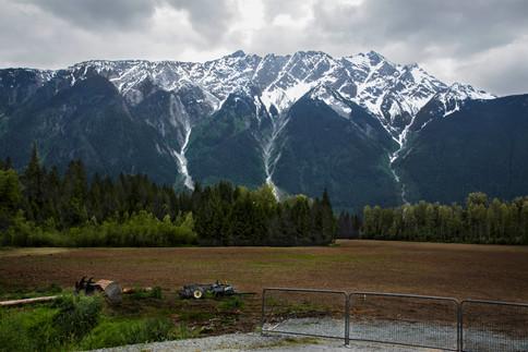 Field at the bottom of rockies, Pemberton, Canada, 2016