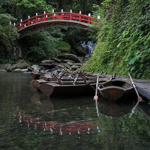Neidong Forest
