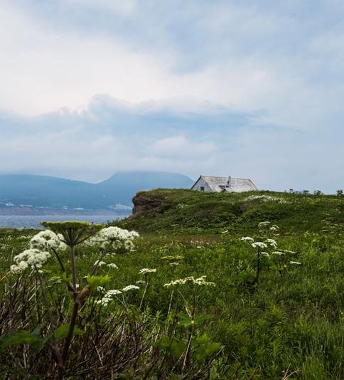 House on the edge, Bonaventure island, Gaspésie, Canada, 2017