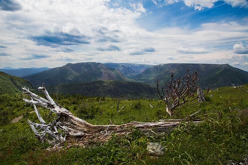 Ernest Laforce summit view