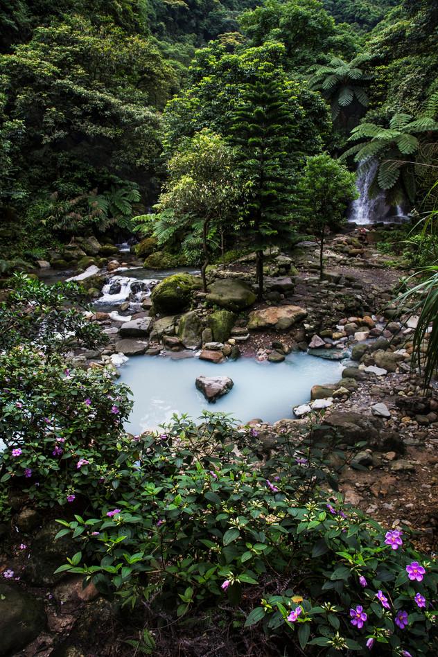 Bayan hot spring, Yangmingshan, Taiwan, 2015
