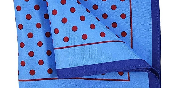 Silk Printed Pocket Square Silk Blue/Red Polka