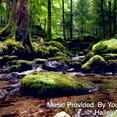 Psalms 31 Thru 40