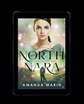 North To Nara eBook