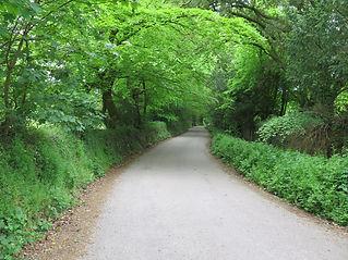 Memory path - Cornwall