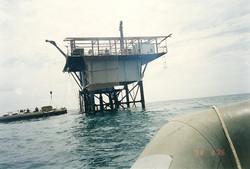 Rifornimento nafta a P.me fisse tramite ''Barracuda''.jpg