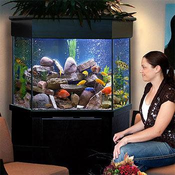 pentagon-aquarium.jpg