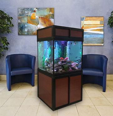 cube-fish-aquarium.jpg