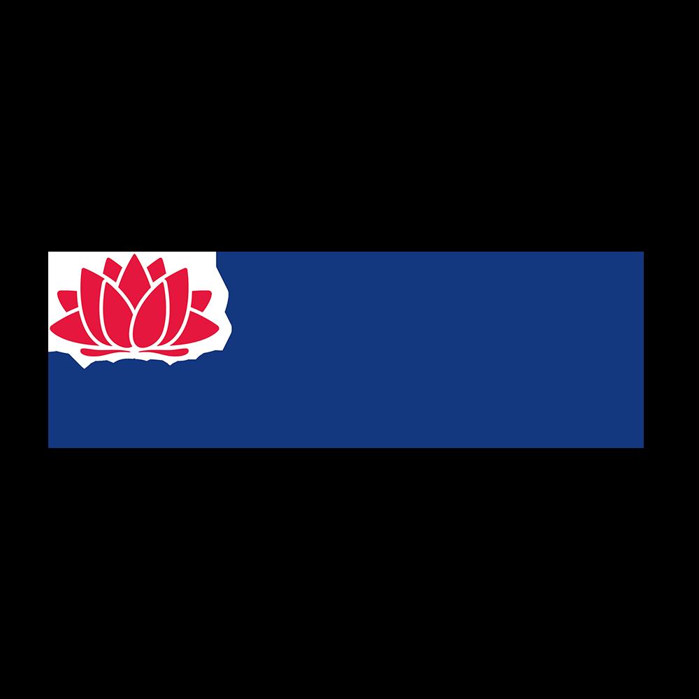 DINSW Logo Square