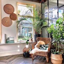 Rotan Lounge stoel