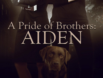 """Spotlight Cover Reveal """"A Pride of Brothers: Aiden"""" by Peggy Jaeger"""