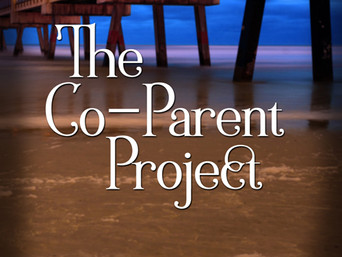 Spotlight New Release Interview   THE CO-PARENT PROJECT by Sandra Dailey