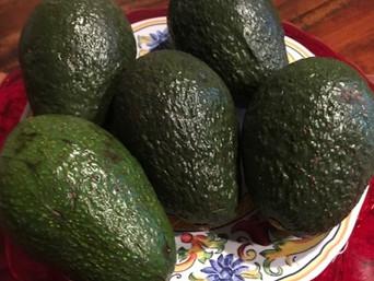 Friday Feast | The Pleasure of the Avocado