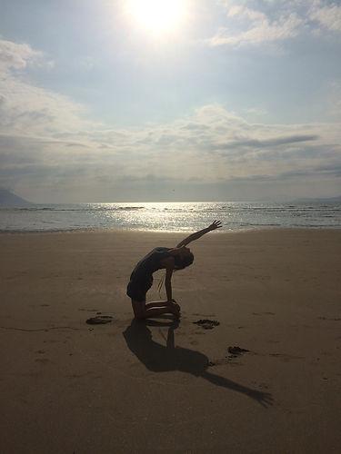 Camel on beach.JPG