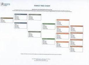 עץ משפחה תמונה.jpg