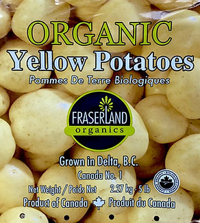 Organic Yellow Potatoes