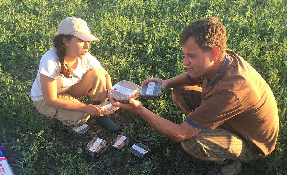 Soil and Insect research soil management